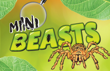 Mini Beasts Event - Book Tickets Now!