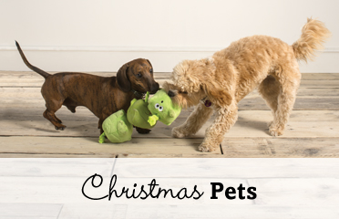 Christmas Pet Gifts