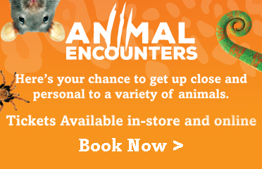 Animal Encounters - Book now