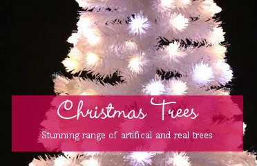 \view our beatiful range of christmas trees