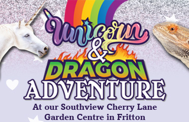 Unicorn and Dragon Adventure - Book your ticket NOW!