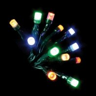 100 LED Multicolour Indoor Multifunction Christmas Lights
