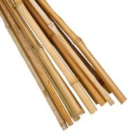 See more information about the 10 Pack 6 Foot Garden Canes