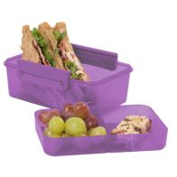 See more information about the Polar Gear Berry Clic Tite 1100ml Double Decker Lunchbox