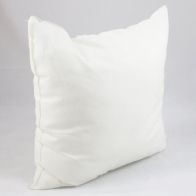 See more information about the Premium 20 Inch Cushion Inner