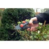 See more information about the Wilkinson Sword Bypass Pruner