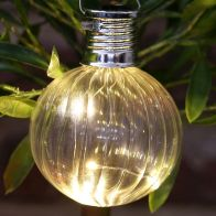 See more information about the Bright Garden Solar Glass Bulb Light - Clear