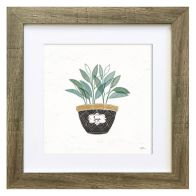 See more information about the Herbs Sage Framed Print Wall Art 10 x 10 Inch