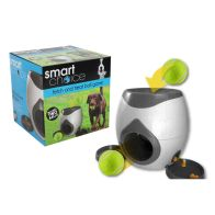 See more information about the Smart Choice Fetch & Treat Dog Ball Game & 2 Balls