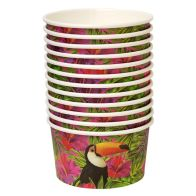 See more information about the Tropical Paper Bowls 9.5cm Pack 12 - Toucan