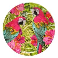 See more information about the Tropical Paper Plates 23cm Pack 12 - Parrot