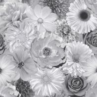 See more information about the Foil In Bloom Mono Wallpaper