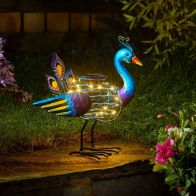See more information about the Peacock Solar Spiralight