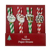 See more information about the Christmas Paper Straws 12 Pack