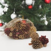 See more information about the Festive Exotics Pine & Cinnamon Potpourri In A Net - Red & Gold