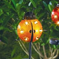 See more information about the Bright Garden Solar Ladybird Stake Light - Orange
