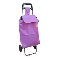 See more information about the Purple Shopping Trolley